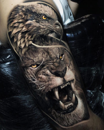 Eagle & Lion
