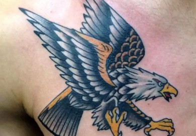 Pictures Of Sparrow Tattoo Designs