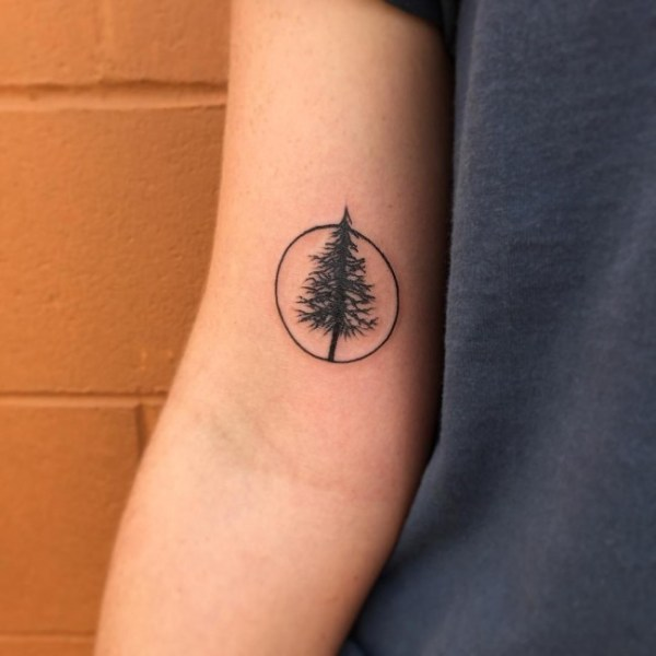 simple and easy pine tree tattoo