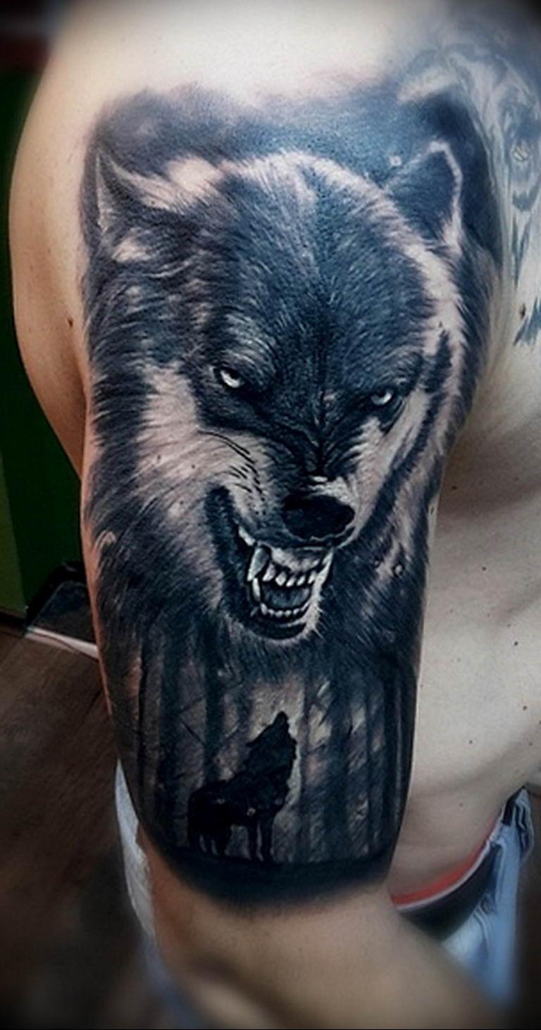 фото тату волчий оскал 01052019 037 Wolf Grin Tattoo Tattoo