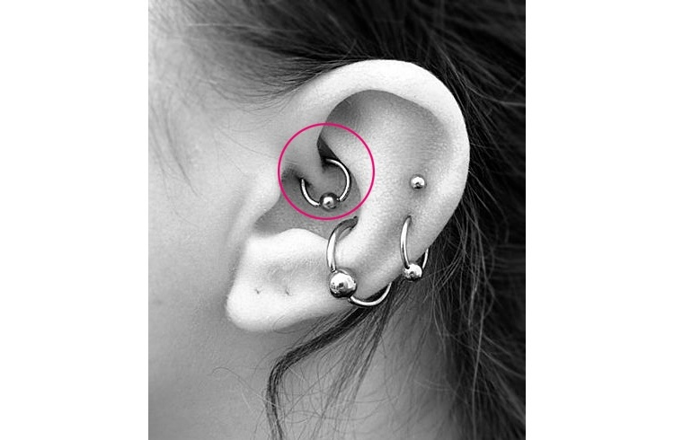 little stimulation goes long way   ve heard that before and back to the daith piercing also let  get right it professional tattoo rh tattooblogger wordpress