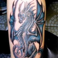 20+ Dragon  Tattoos