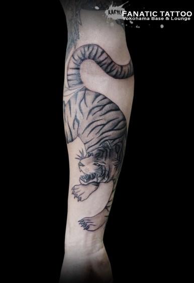 トラ tiger