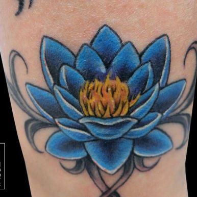 蓮 ブルー ロータス blue lotus