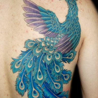 クジャク peacock