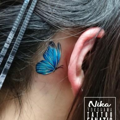 butterfly 蝶々 青 blue