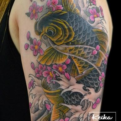 鯉 桜 koi-fish