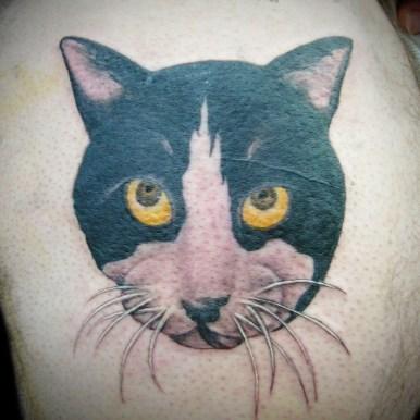 cat ネコ