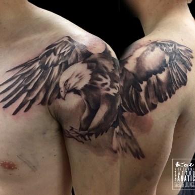 eagle 鷲