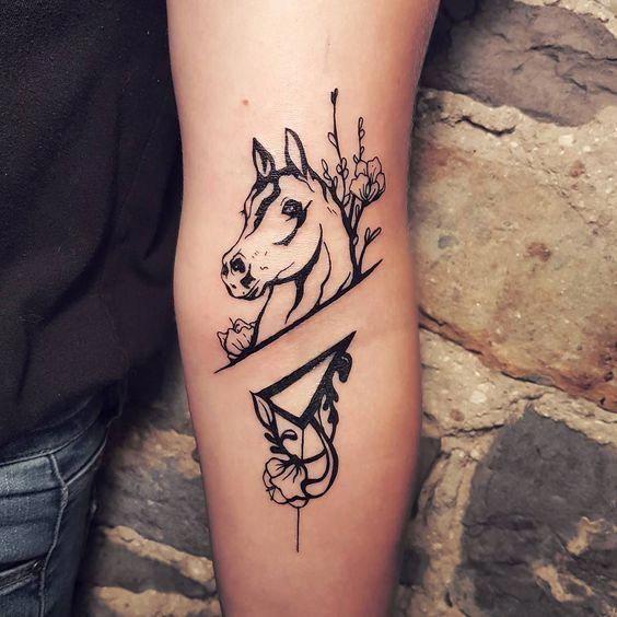 Merveilleux petit cheval