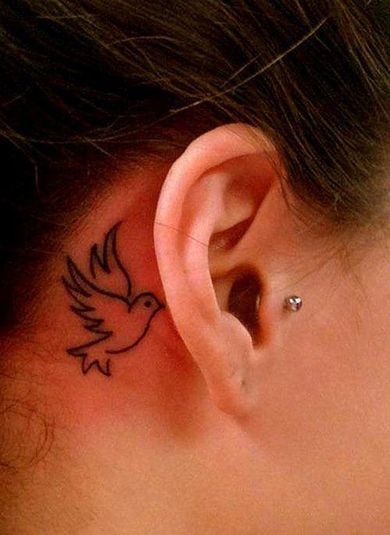 Petit oiseau en arrière de l'oreille