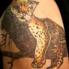 Signification de tatouage de guépard 42