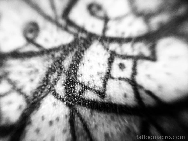 Untitled 19 web