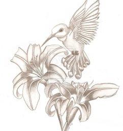 cool tattoo girl hummingbird sketch [ 797 x 1003 Pixel ]