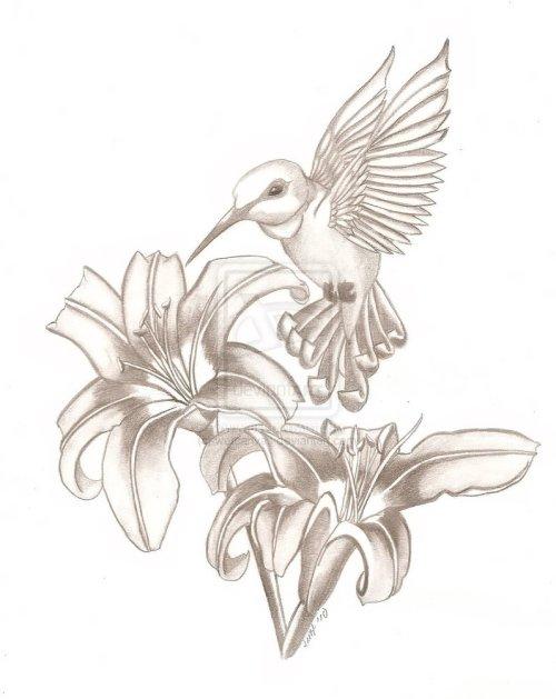 small resolution of cool tattoo girl hummingbird sketch