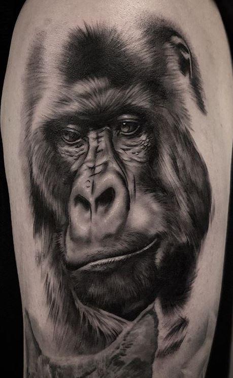 Gorilla Tattoo Meaning : gorilla, tattoo, meaning, Unique, Gorilla, Tattoos, You'll, Tattoo