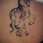 Cute Black Horse Silhouette Tattoo Tattoos Book 65 000 Tattoos Designs