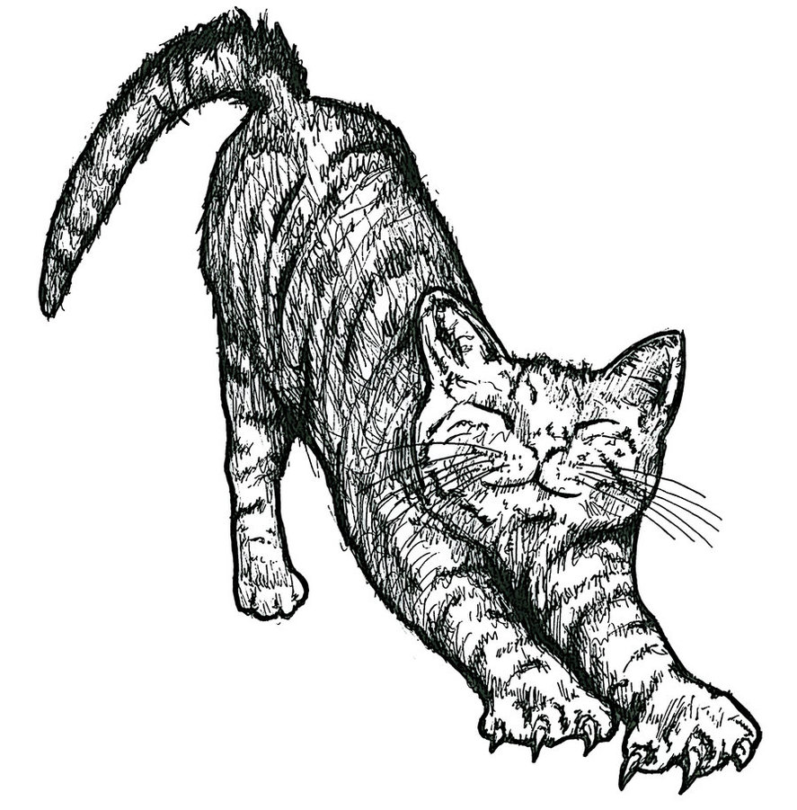 Cat Tattoos Designs Ideas And Meaning Tattoos For You Ideas And Designs