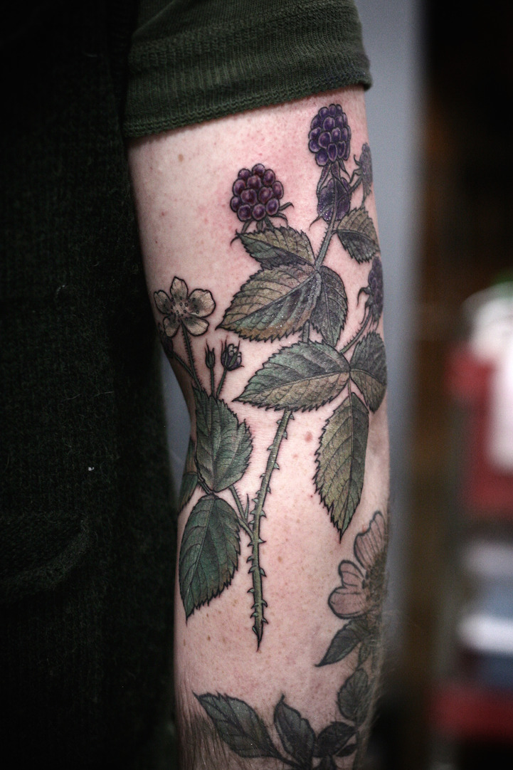 Exquisitely Beautiful Botanical Tattoos By Alice Carrier Ideas And Designs