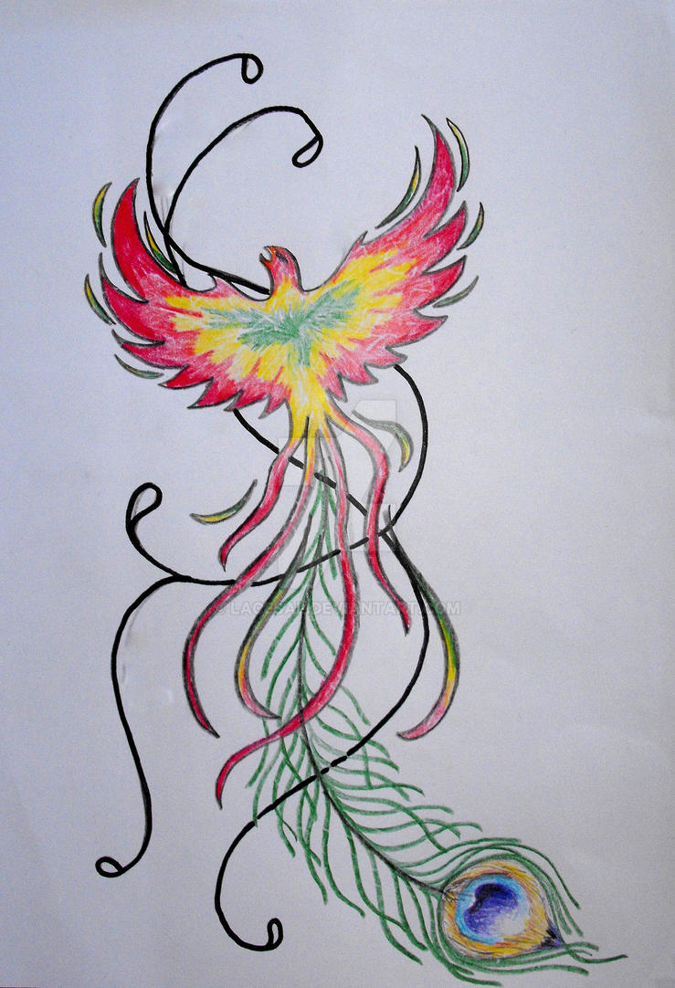 Rasta Phoenix By Lacesal On Deviantart Ideas And Designs