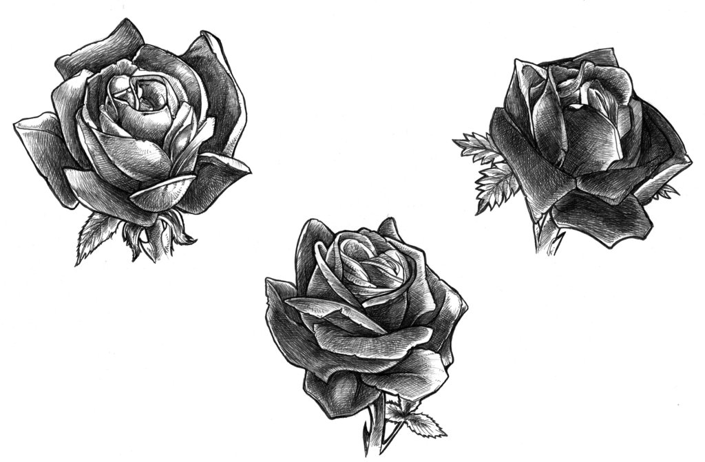 Black Rose Tattoo Designs Ideas Photos Images Memoir Tattoos Ideas And Designs