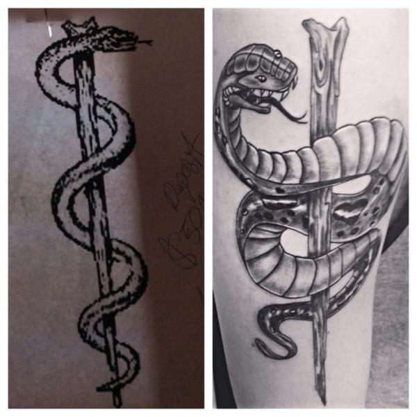 28 Asclepius Tattoo Designs Staff Of Asclepius Tree Ideas And Designs