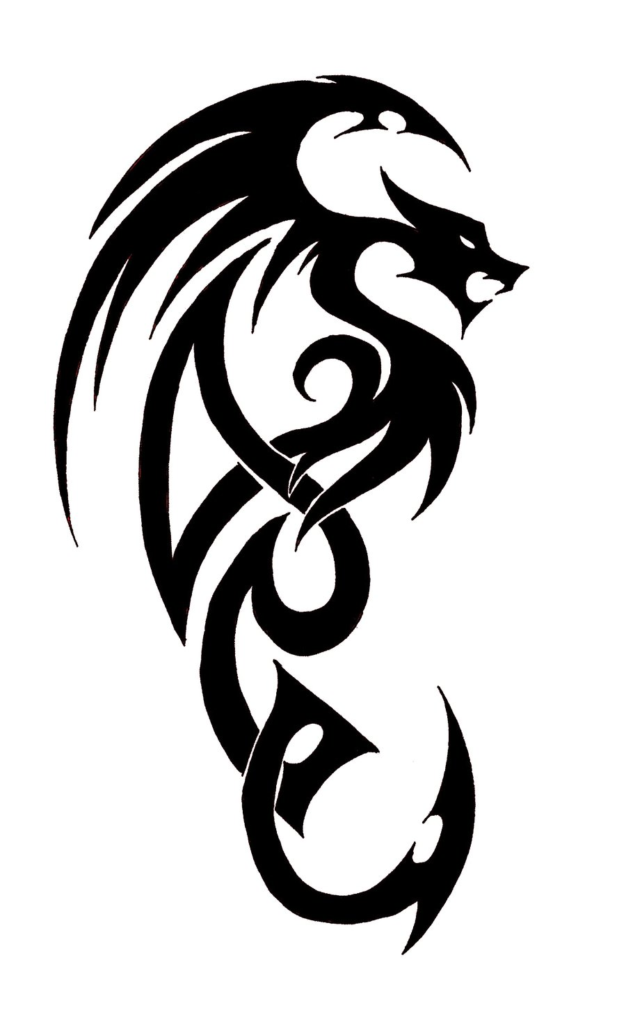 Free Simple Dragon Pictures Download Free Clip Art Free Ideas And Designs