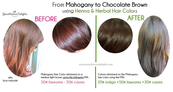 Dye Your Gray Hair Chocolate Brown Using Henna Henna Ideas And Designs