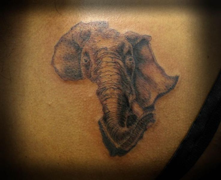 1033 Best Elephant Tattoos Art Images On Pinterest Ideas And Designs
