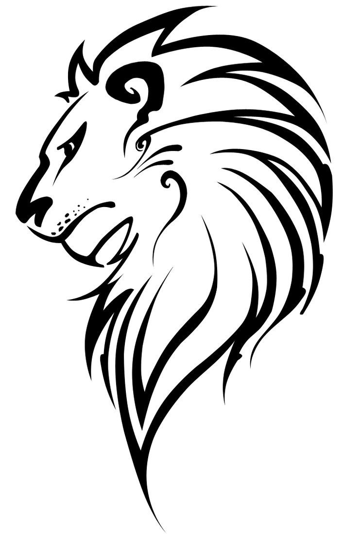 Best 25 Lion Head Drawing Ideas On Pinterest Lion Face Ideas And Designs
