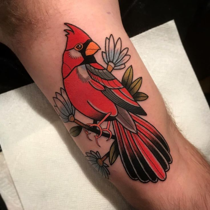 25 Unique Cardinal Tattoos Ideas On Pinterest Red Ideas And Designs
