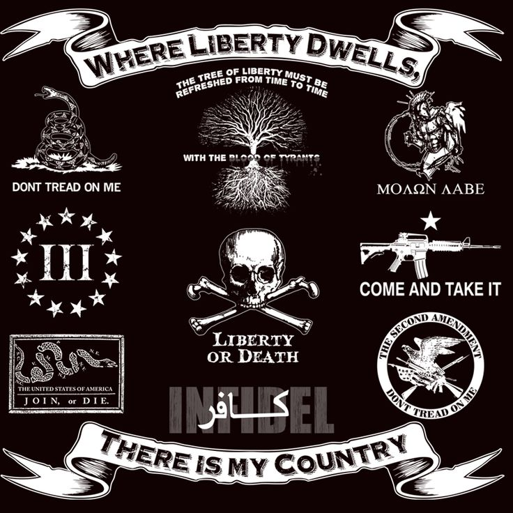 54 Best America Images On Pinterest 2Nd Amendment Ideas And Designs