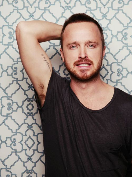 Aaron Paul 2018 Wife Tattoos Smoking Body Facts Taddlr Ideas And Designs