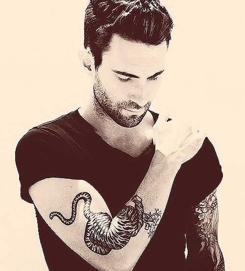 40 Best Adam Levine Tiger Tattoo Drawing Images On Ideas And Designs