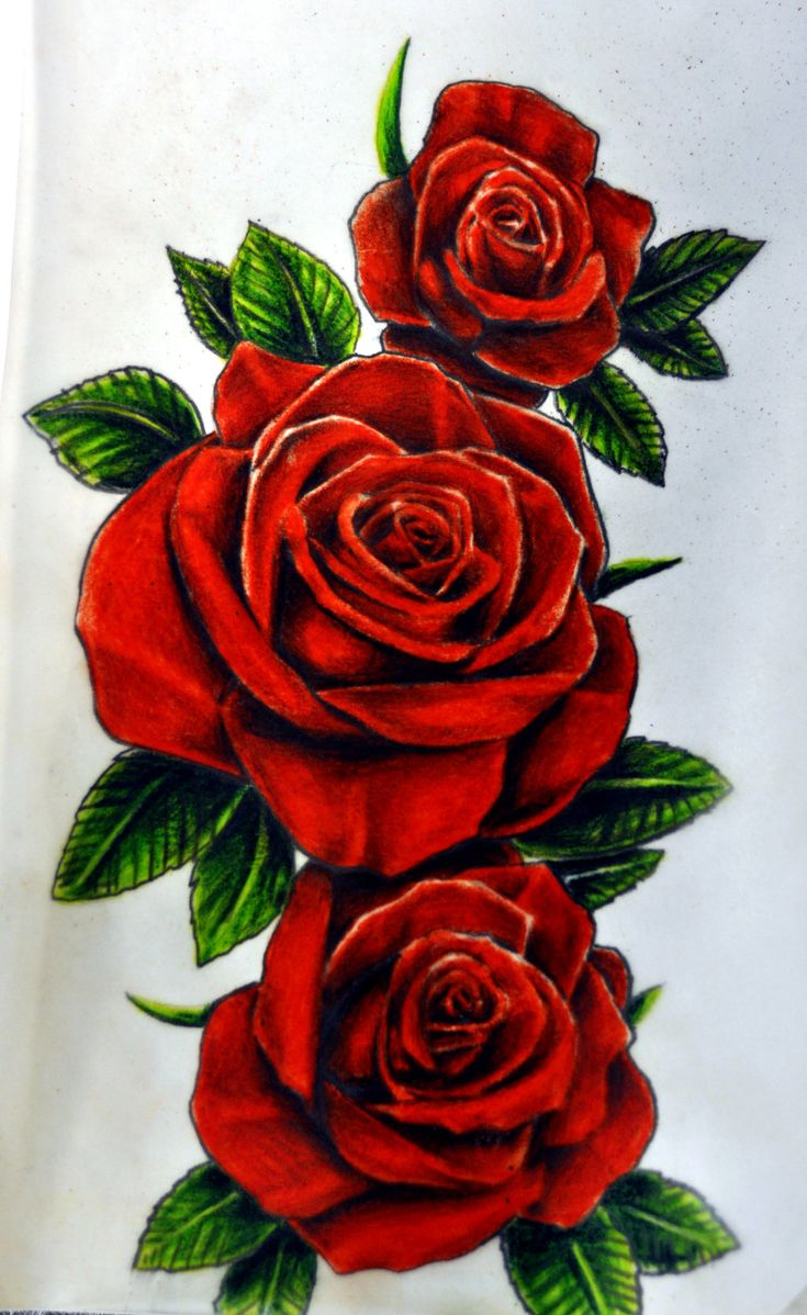 360 Best Tattoos Roses Images On Pinterest Drawing Ideas And Designs