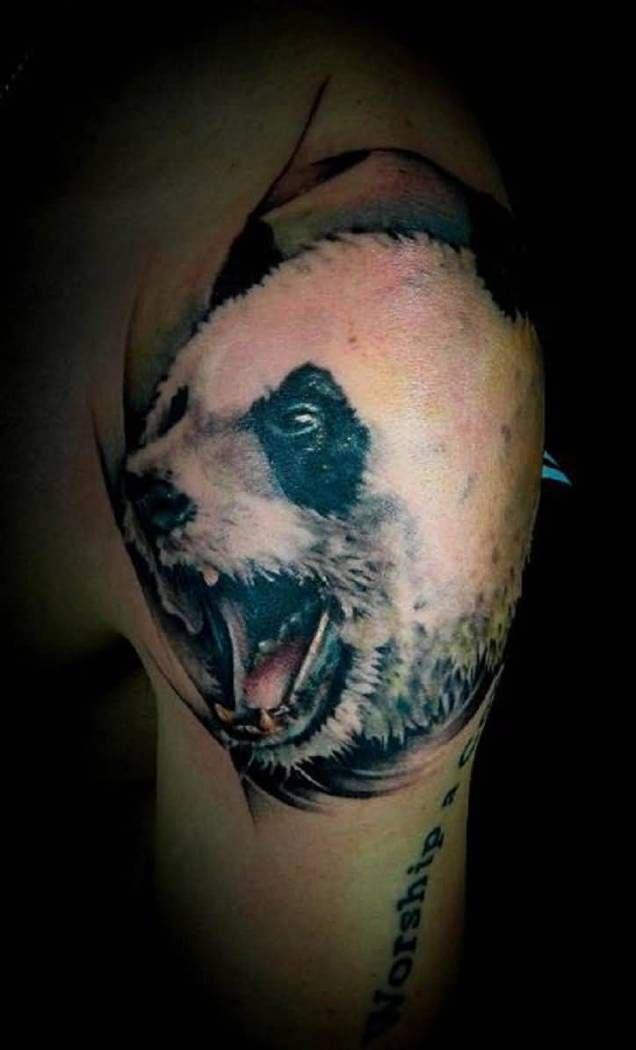 3D Face Tattoo Designs – Best 3D Men And Animal Face Ideas And Designs