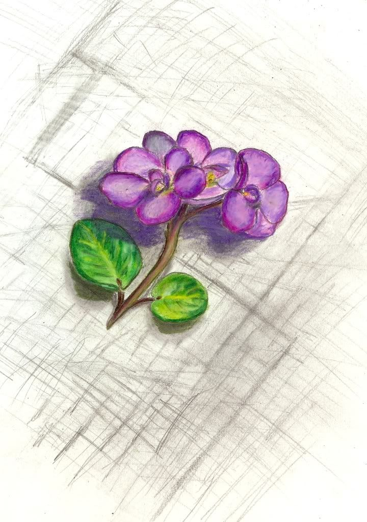 African Violet Tattoo To Honor Grandma Google Search Ideas And Designs