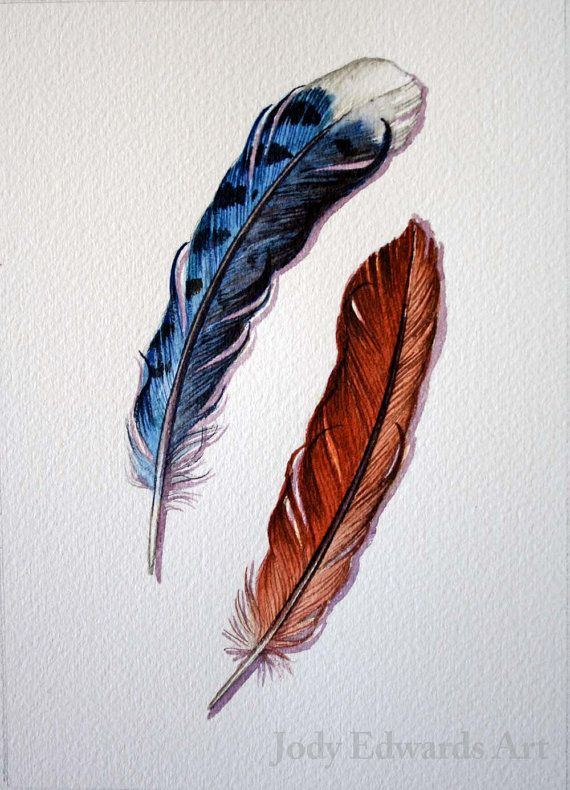 Blue Jay And Cardinal Feather Study Original Watercolor Ideas And Designs
