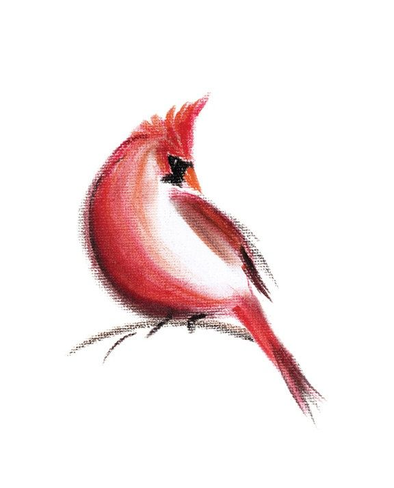 Cardinal Art Print Of Pastel Drawing Bird Red Spring Ideas And Designs