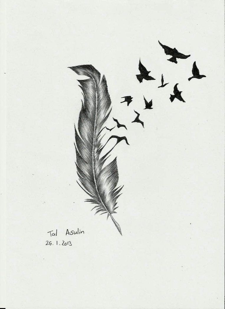 Feather Bird Tattoo Drawings Feather By Talucifer On Ideas And Designs