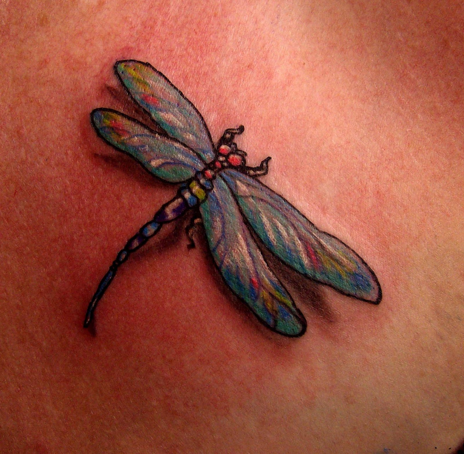 Free Tattoo Pictures Dragonfly Tattoos Where Can You Ideas And Designs