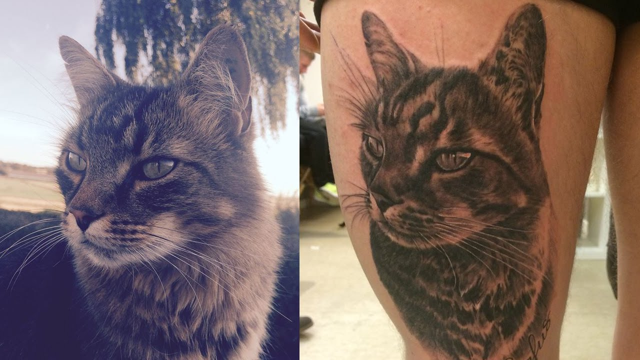 Getting A Beautiful Realistic Black And Grey Cat Portrait Ideas And Designs