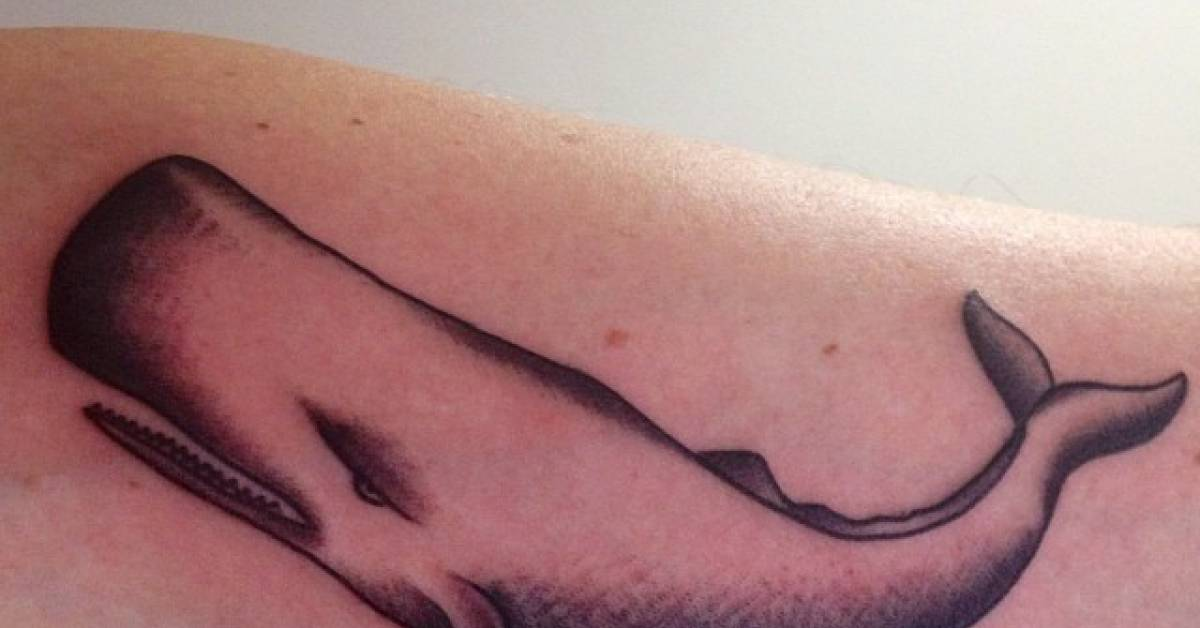 Inner Arm Tattoo Of A Whale Ideas And Designs