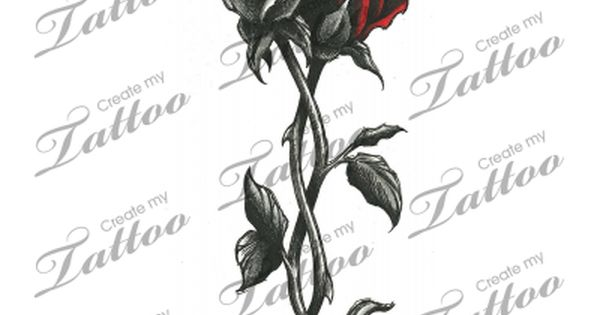 Intertwined Roses Sergio Is The White Rose And I M The Red Ideas And Designs