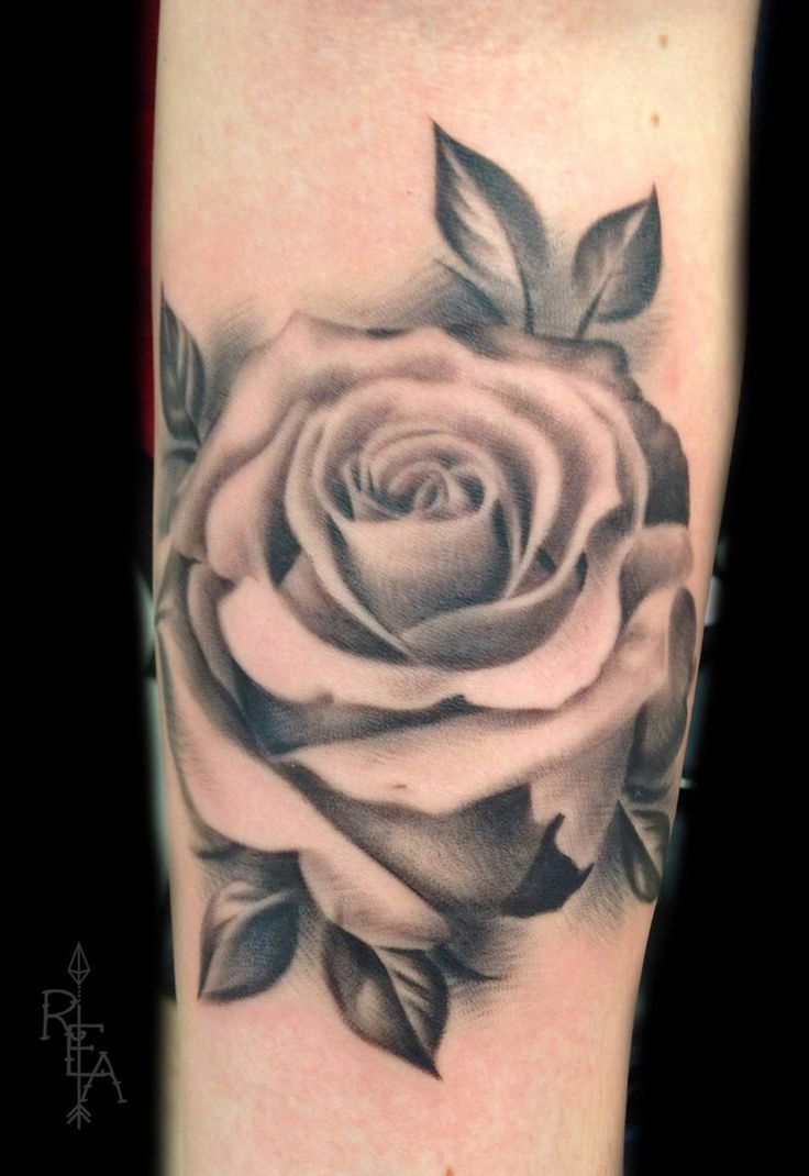 17 Best Ideas About Black And Grey Rose On Pinterest Ideas And Designs