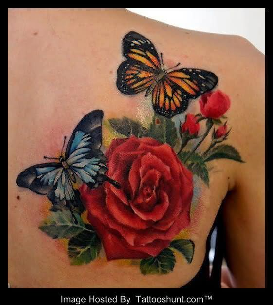 Rose Tattoo On Shoulder Beautiful Colored Butterflies Ideas And Designs