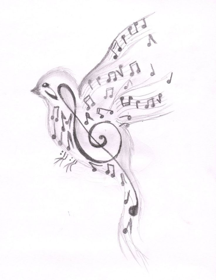 25 Best Ideas About Songbird Tattoo On Pinterest Ideas And Designs