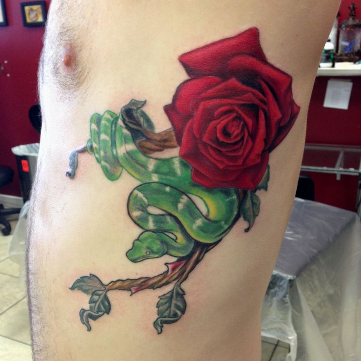Snake And Rose Tattoo By Mike Ashworth Tattoos By Mike Ideas And Designs