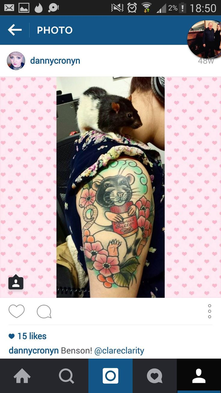 53 Best Images About Tattoo Rat On Pinterest Behance Ideas And Designs