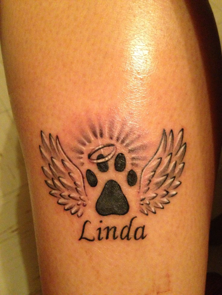Best 25 Pet Memory Tattoos Ideas On Pinterest Ideas And Designs